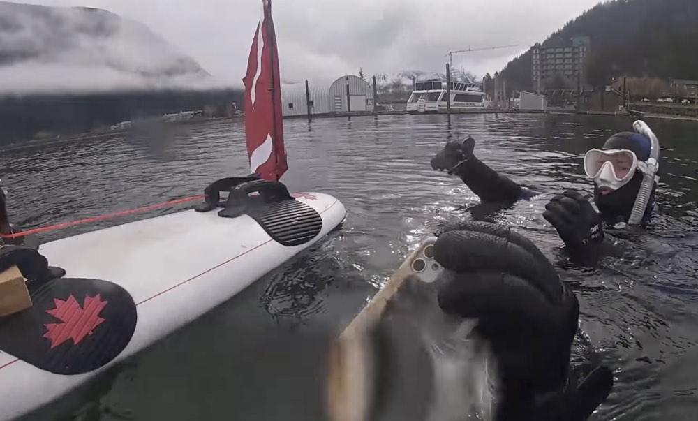 iPhone 11 vivito y coleando tras 6 meses bajo el agua